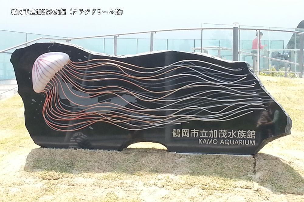 加茂水族館(クラゲドリーム館)